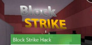 Block Strike Cheats